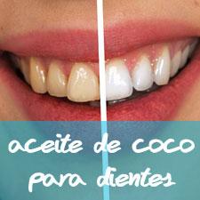 Pasta De Dientes Sin Fluor El Aceite De Coco La Mejor Pasta Dental